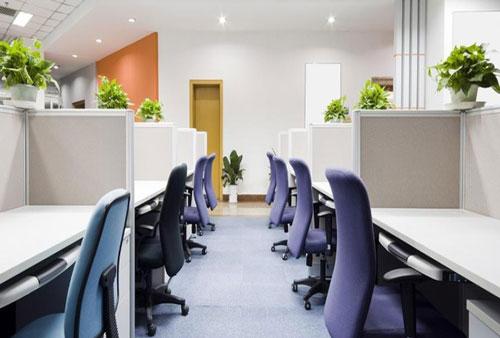 văn phòng xanh đẹp 3