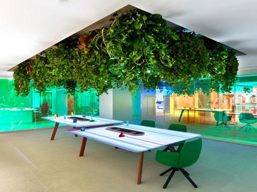 văn phòng xanh đẹp 1