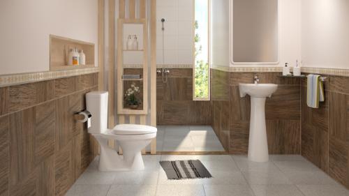 Nhà vệ sinh thông minh ở Nhật Bản, sạch, tiết kiệm